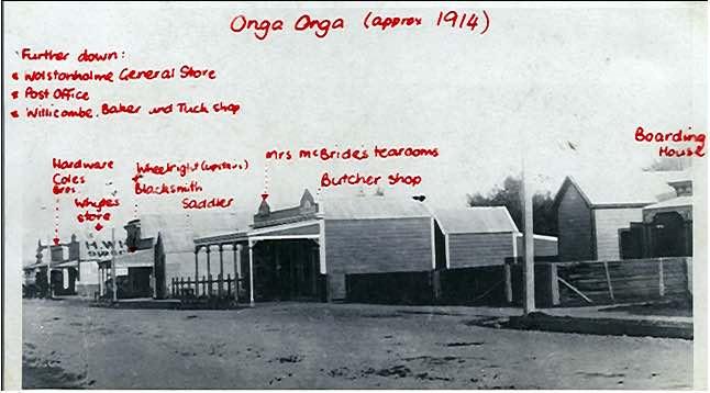 Ongaonga1914